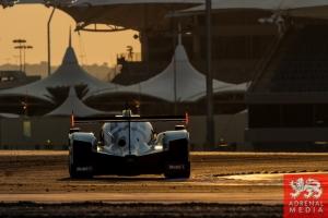 Romain Dumas (FRA) / Neel Jani (CHE) / Marc Lieb (DEU) / Car #14 LMP1 Porsche Team (DEU) Porsche 919 Hybrid  - 6 Hours of Bahrain at Bahrain International Circuit (BIC) - Sakhir - Kingdom of Bahrain