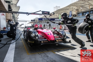 David Cheng (USA) / Keiko Ihara (JPN) / Mark Patterson (USA) / Car #35 LMP2 OAK RACING (FRA) Morgan - Judd - 6 Hours of Bahrain at Bahrain International Circuit (BIC) - Sakhir - Kingdom of Bahrain