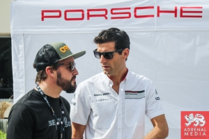 Fernando Alonso meets Mark Webber - 6 Hours of Bahrain at Bahrain International Circuit (BIC) - Sakhir - Kingdom of Bahrain