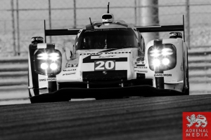 Timo Bernhard (DEU) / Mark Webber (AUS) / Brendon Hartley (NZL) / Car #20 LMP1 Porsche Team (DEU) Porsche 919 Hybrid - 6 Hours of Bahrain at Bahrain International Circuit (BIC) - Sakhir - Kingdom of Bahrain