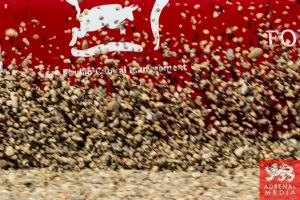 Johnny Laursen (DNK) / Mikkel Mac  (DNK) / Jan Magnussen (DNK) drivers of car #60 FORMULA RACING  (DNK) Ferrari F458 Italia GT3 Race at Circuito Estoril - Cascais - Portugal