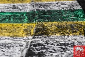 Track Texture - 6 Hours of Sao Paulo at Interlagos Circuit - Sao Paulo - Brazil