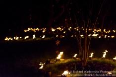 Kew Gardens Light Walk 31st December 2016 Images taken by Richard Washbrooke Photography